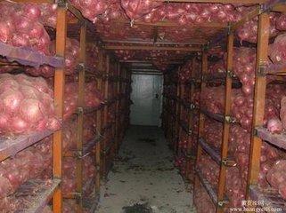 800T蔬菜保鲜冷库安装案例